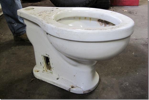 hitler_toilet_012513_620px