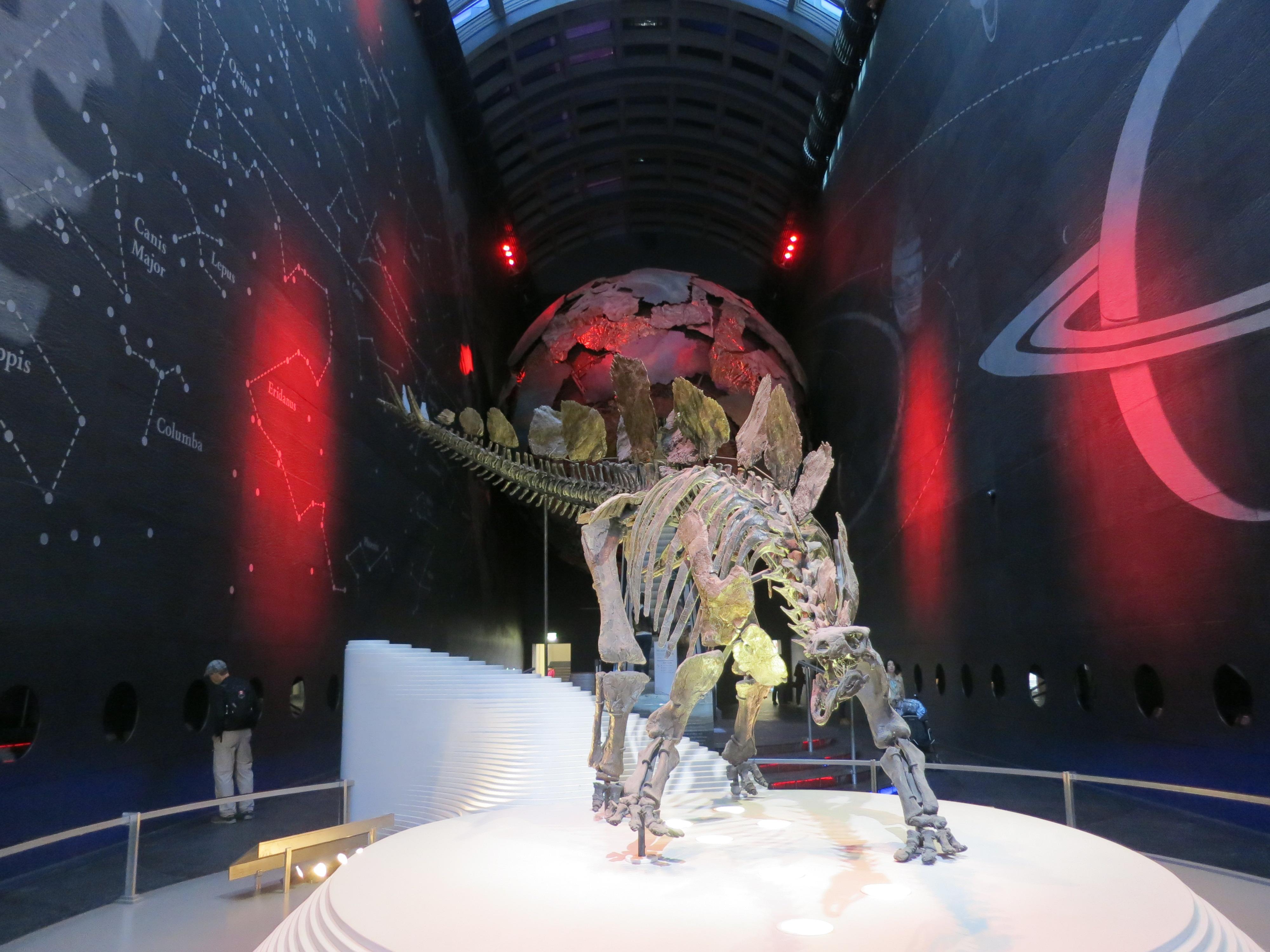 Auch tot: Dinosaurier